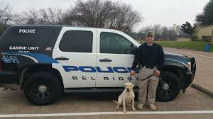 dog saved from being euthanized becomes cop