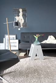 Gray Blue Living Room 219 Best Paint Images On Pinterest Paint Colours Spare Room And