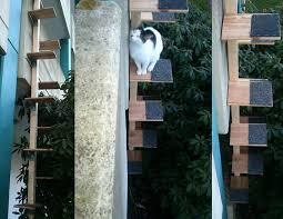 katzenleiter balkon aus dem 1 stock in die freiheit eine diy katzentreppe für