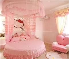 bedroom fabulous princess canopy beds for girls king size beds