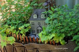 the graceful gardener herbs