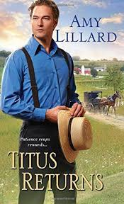 227 best amish wisdom books to read images on amish
