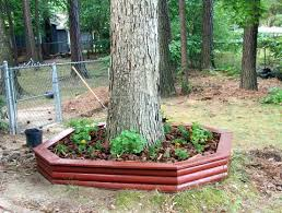 Patio Around Tree 231 Designs Planter Box With Seating Around The Alder Tree Part 1