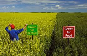 Sale Barns In Nebraska Welcome Investors In Farmland Farms For Sale Investing In