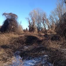 floyd bennett field backyard and beyond
