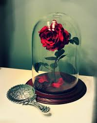 rose in glass 988 best crafts cloche to my images on pinterest bell jars