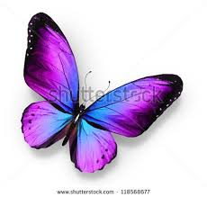 36 best blue and purple butterfly tattoos images on