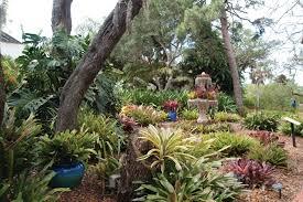 Botanical Garden Internship Selby Botanical Gardens Activities Sarasota Magazine