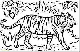 awesome baby jungle animal coloring pages photos triamterene us