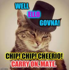 Funny British Memes - british cat imgflip