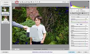get your white balance right in seconds using grey card