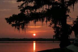 Louisiana travel tours images Louisiana swamps in the fall louisiana swamp tours travel my jpg