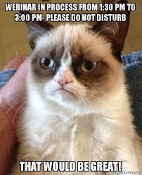 Webinar Meme - webinar in process from 1 30 pm to 3 00 pm please do not disturb