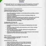 Media Resume Template Social Media Resume Template Gfyork Com