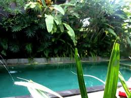 best price on permana cottage in bali reviews