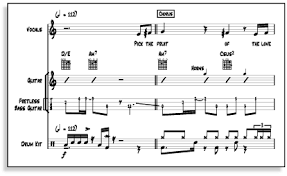 special notations in sibelius