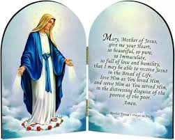 mother teresa an authorized biography summary blessed mother teresa s prayer to mary cf catholic prayer