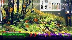 Aquascaping Guide Cal Aqua Labs Complete Aquascaping Guide Step By Step Youtube