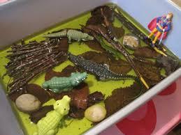 alligator cuisine aligator cuisine alligator ion peeler cuisine jardin