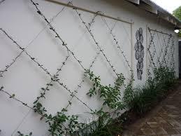 garden wall designs ea architecture photo ideas zoomtm loversiq