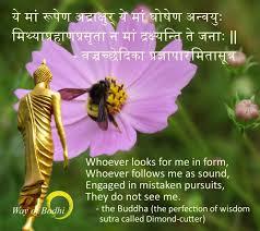 Seeking Honey Seeking The Buddha Is Not Like A Bee Seeking Honey One Does Not