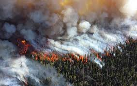 Department Of The Interior National Park Service Exclusive The Interior Department Scrubs Climate Change From Its