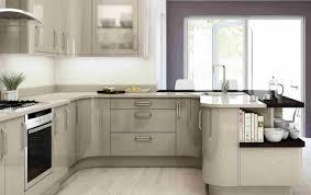 cabinet kitchen cabinets doors also trendy oak kitchen cabinet