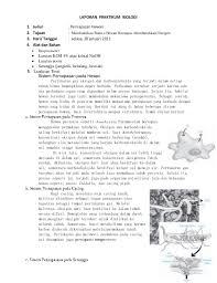 format laporan praktikum laporan praktikum biologi pernapasan