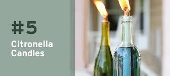 Upcycled Wine Bottles - upcycle 10 wine bottle upcycle ideas blog botanical paperworks