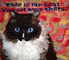 Rug Hooking With Yarn 70 Best Rug Hooking Cats Images On Pinterest Rag Rugs Punch