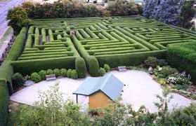 Westbury Botanical Gardens Westbury Maze And Tea Room Tassie Travel Plan Pinterest Maze
