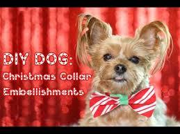 dog christmas diy dog christmas collar embellishments