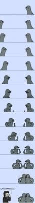 Seal Gay Meme - gaaaaaaaaay imgur