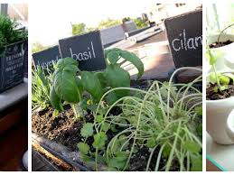 garden ideas wonderful herb garden outdoor upon home decor