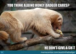 Albino Meme - honey badger albino edition by recyclebin meme center