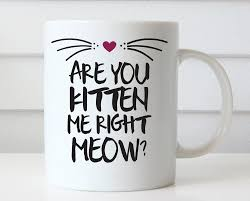 funny cat coffee mugs promotion shop for promotional funny cat
