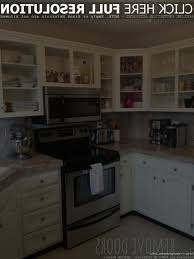 wood stain kitchen cabinets awesome kitchen cabinets without doors hi kitchen