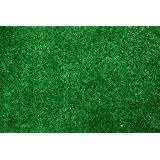 Fake Grass Outdoor Rug Amazon Com Outdoor Turf Rug Green 10 U0027 X 10 U0027 Several Other