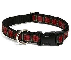 scottish highland plaid collar