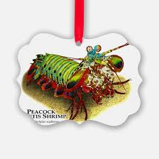 shrimp christmas ornament cafepress