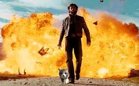Explosion Meme - cat walking away from explosion inspires another great photoshop battle