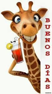 pin by iris janneth orozco on saludos pinterest giraffe