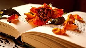 Book Wallpaper by Beautiful Book Wallpaper 1920x1080 33194