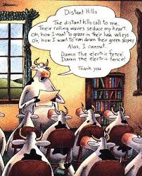 my favorite far side of all time what s yours