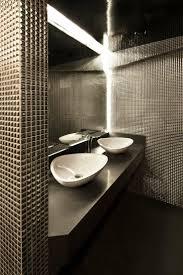 Restaurant Bathroom Design Colors 62 Best A Hotel Public Restrooms Images On Pinterest Toilet