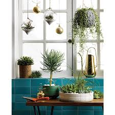 make summer last with these gorgeous indoor terrariums khachilife