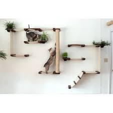 cat wall furniture wall mounted cat trees condos you ll love wayfair