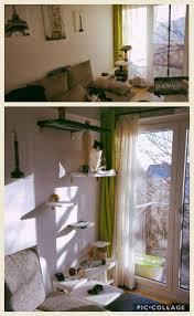Katze Schlafzimmer Ja Bett Nein Die Besten 25 Katze Kletterwand Ideen Auf Pinterest Regale Für