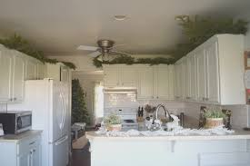 above kitchen cabinets ideas greenery above kitchen cabinets ideas on kitchen cabinet