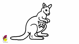 coloring pages attractive sketch of a kangaroo maxresdefault
